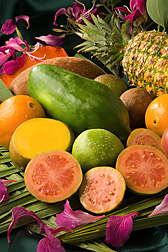 Tropical fruit, including mamey sapote, mango, orange, papaya, pineapple, and sapodilla.