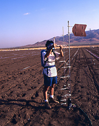 Measuring fumigant concentration at several distances above the soil surface, a student adjusts the rate of airflow through a charcoal sample collector: Click here for full photo caption.