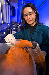 Chemist processes frozen carrot samples before testing them for residue of the herbicide glyphosate: Click here for full photo caption.