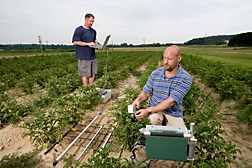 In a Beltsville potato field, an engineer (right) measures leaf photosynthesis as a technician downloads lightbar data, which measures light interception in the crop: Click here for full photo caption.