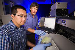 Technician, left, and chemist use high-throughput enzyme library screening to discover improved enzymes: Click here for full photo caption.