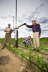 ARS agricultural engineers adjust the height of solar radiation instruments to 1 meter above the corn canopy: Click here for full photo caption.