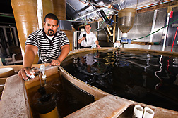 ARS engineering technician (left) and director of aquaculture systems research at the Freshwater Institute collect water from a tank used to study Atlantic salmon growth and test the sample for dissolved oxygen concentration: Click here for full photo caption.
