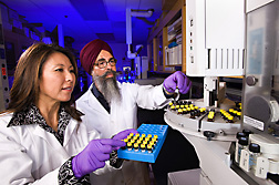 Molecular biologist (left) and chemist load lipid samples extracted from tissue for analysis of fatty acids by gas chromatography/mass spectroscopy: Click here for full photo caption.