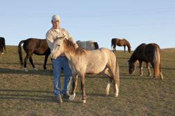 James Allison prepara un caballo para utilización en investigaciones científicas. Enlace a la información en inglés sobre la foto