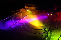 Different wavelengths and colors of light were tested to see which best attracted insects: Click here for photo caption.