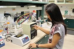 Postdoctoral researcher Nittaya Ummarat sets up a device that traps aroma volatiles from mandarin juice for analysis by gas chromatography.