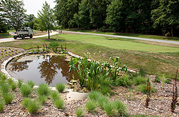 The new Grass Roots exhibit at the U.S. National Arboretum features examples of many uses of turf grass, including a small demonstration golf hole (in the background) built to professional specifications.
