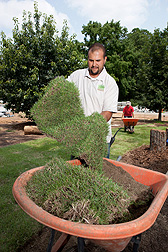 Grass Roots intern Reuben Weiser lifts a piece of Zenith zoysiagrass during sod installation for the exhibit while intern Megan Wiemer (background) obtains more sod.