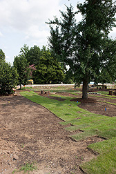Sod being installed in July 2014 for the fall opening of the U.S. National Arboretum's Grass Roots exhibit, featuring 14 stations on everything from golf course grasses to turf diseases to green roofs.