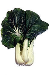 Bok-choy. Click here for full photo caption.