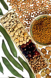 Legumes. Click here for full photo caption.