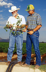 Cotton growers discuss interagency efforts to improve the district's agriculture. Click here for full photo caption.