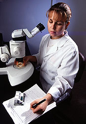 Nematologists use microscopes to look at nematode eggs.