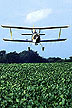 Low-insecticide bait application on soybeans