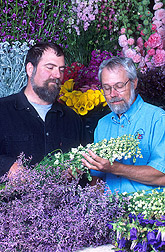 Grower and agricultural engineer examine healthy cut flowers: Click here for full photo caption.