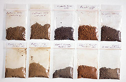 Two rows of dried soil samples: Click here for full photo caption.