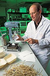 Photo: Plant physiologist Gregory Glenn prepares to make wheat-starch biodegradable containers. Link to photo information