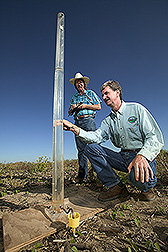 Soil scientist, assisted by NRCS resource soil scientist, uses a funnel to measure water infiltration rate in earthworm burrow: Click here for full photo caption.