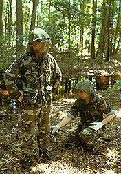 ARS technicians conduct a field test in a Florida woodland: Click here for full photo caption.
