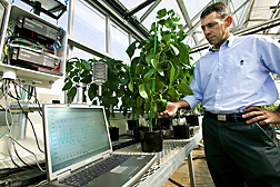 Soil scientist observes a data acquisition and control system used in a greenhouse study: Click here for full photo caption.