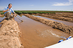 Photo: Researcher taking water measurements in an irrigation canal. Link to photo information