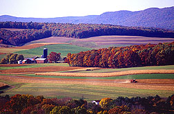 A picturesque view of a farm that uses some sustainable agriculture practices: Click here for photo caption.