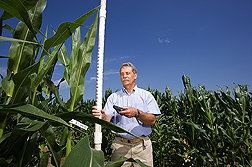 Geneticist records plant height with a hand-held field computer: Click here for full photo caption.