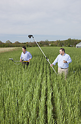 "ARS physical scientist (right) uses a camera that detects near-infrared, green, and blue light. A physical scientist (left) with the U.S. Geological Survey at Beltsville, is measuring greenness with an ""on-the-go"" sensor available commercially: Click here for full photo caption."