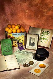 Artifacts relating to William Saunders, USDA's first horticulturist and superintendent of experimental gardens, including the first USDA publication, which he authored: Click here for full photo caption.