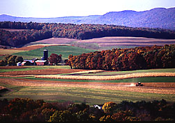 Farming near Klingerstown, Pennsylvania: Click here for photo caption.