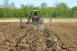 Photo: Poultry litter being incorporated into the soil during disking of a field.  Link to photo information