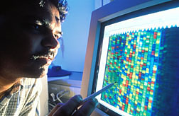 Molecular biologist views DNA sequence of a gene. Click here for full photo caption.