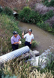 Scientists check for PAM residues in runoff water