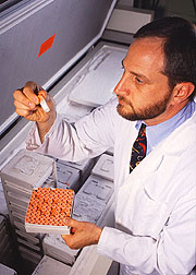 Physiologist David Baer sorts vials of plasma.