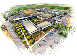 Image: Watercolor rendering of the new U.S. Arid-Land Agricultural Research Center in Maricopa, Arizona. Link to larger image.
