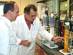 Ariel Szogi and Matias Vanotti examine a packed-bed bench reactor containing the anammox bacteria.