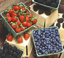 Baskets of fresh blueberries and strawberries. Link to photo information