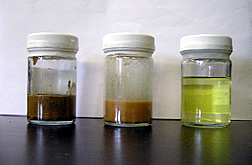 Three jars containing raw trap grease, partly filtered grease, and final product--biodiedel fuel.