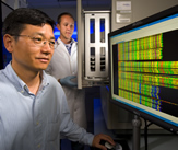 In a lab, Yong Gu and Devin Coleman-Derr view computer screen displaying DNA sequences of wheat. Link to photo information