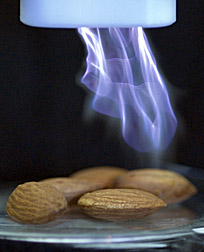Photo: Cold plasma treatment of almonds.