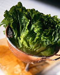 Photo: Lettuce.