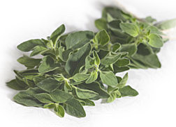 Photo: Oregano