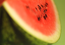 Photo: Watermelon.