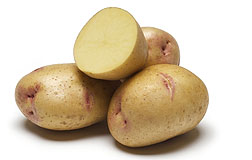 Photo: Yukon Gem potatoes.