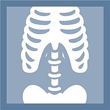 Photo: Clipart of a skeleton mid-section.