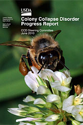 Photo: Cover of the 2010 Colony Collapse Disorder Progress Report showing a honey bee on a flower