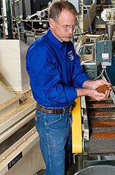 Photo: ARS fish physiologist Rick Barrows inspects fish food pellets made of barley on a conveyer belt.