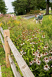 Photo: ARS hydrologist Douglas Boyer (right) and Beckley, WV, Sanitary Board operations manager Jeremiah Johnson examine a rain garden. Link to photo information