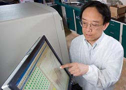 Photo: ARS chemist Thomas Wang looks at data on a computer screen.